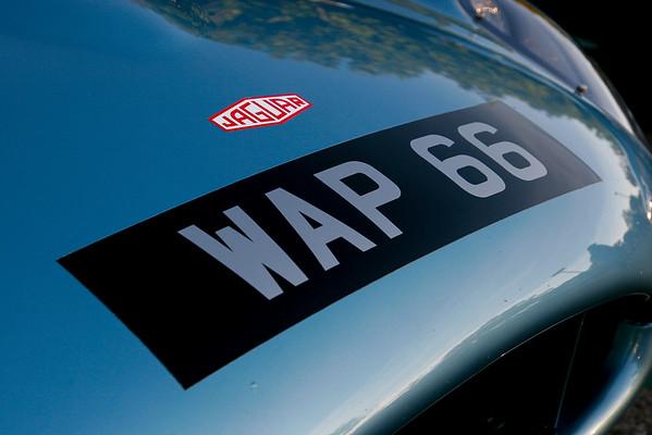 WAP 66